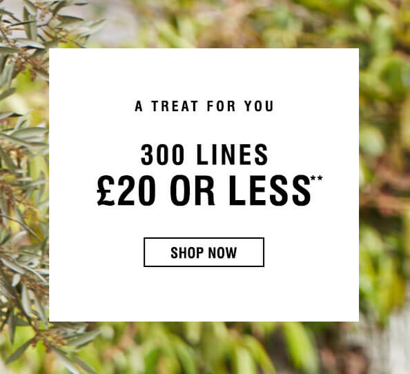 Evans Clothing Evans Clothing: 300 lines £20 or less off