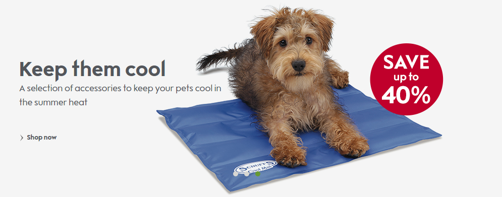 Waitrose Pet: Sale up to 40% off selection of accessories to keep your pets cool